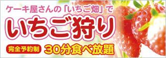 ケーキ屋さんの「いちご畑」でいちご狩り(完全予約制)30分食べ放題
